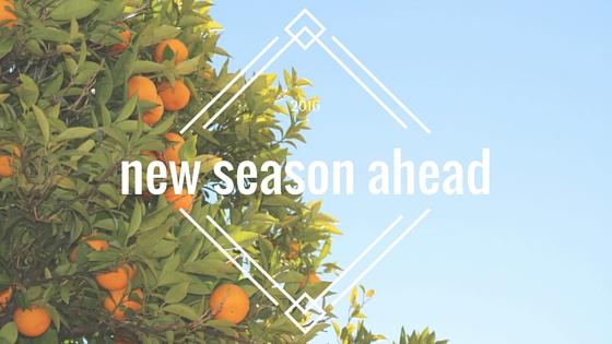 new season ahead